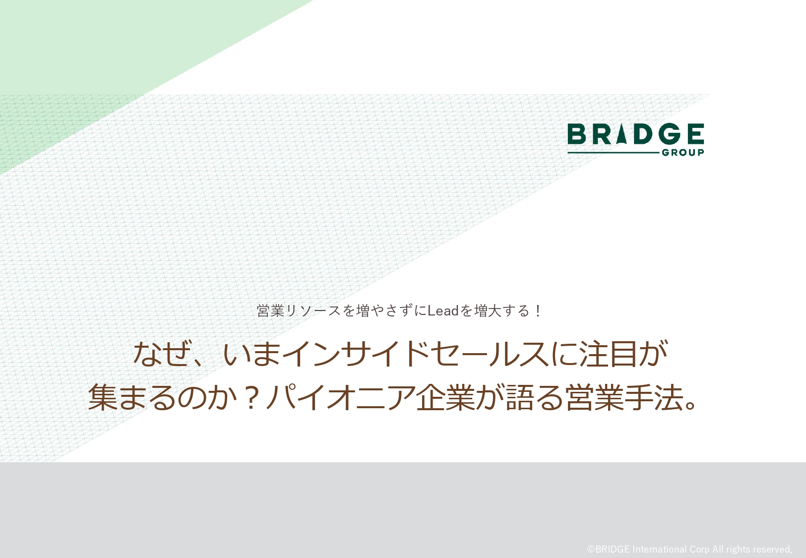 Bridge_003_whatISR-v2_page-0001