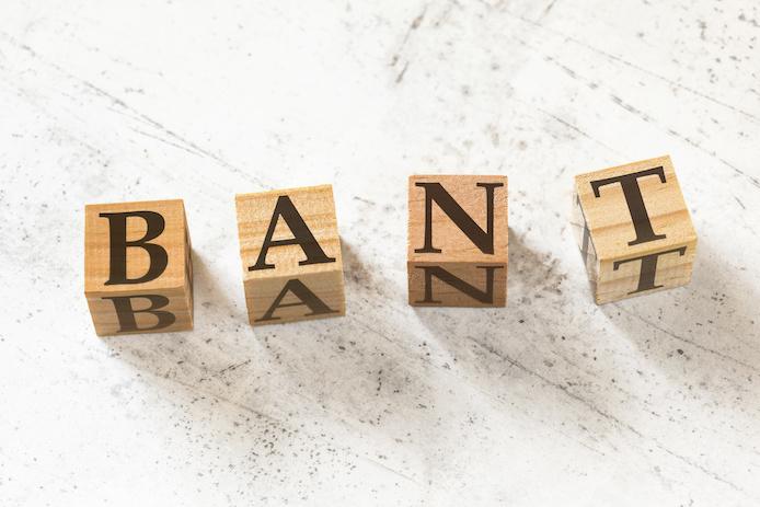 BtoB営業とBtoC営業の違いからみるBANT情報の重要性〜インサイドセールスが法人営業に適している理由〜、BANT、バント